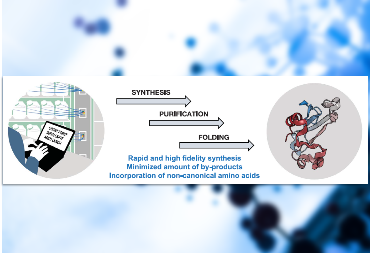 Peptide Synthesis