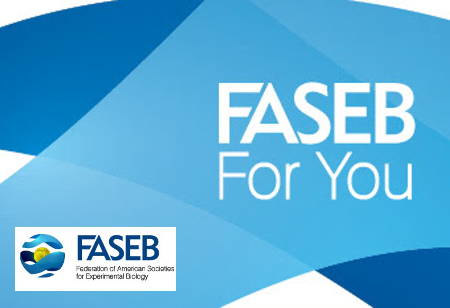 Recent FASEB Updates